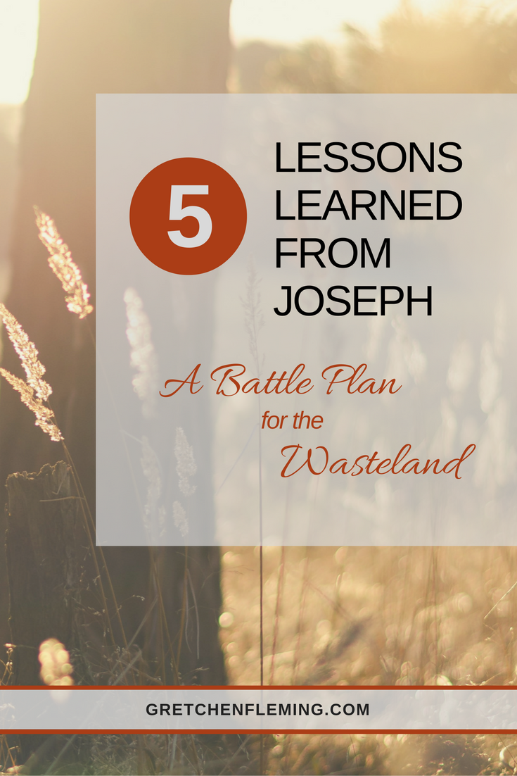 The Battle Plan For The Wasteland